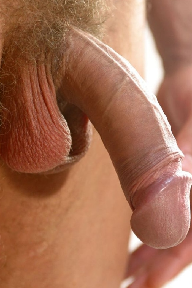 Closeup dick